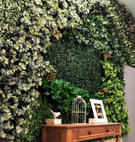 时尚装饰 如何让绿色植物爬上墙
